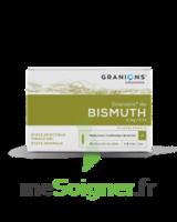 Granions De Bismuth 2 Mg/2 Ml S Buv 10amp/2ml à AIX-EN-PROVENCE