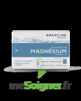 Granions De Magnesium 3,82 Mg/2 Ml S Buv 30amp/2ml à AIX-EN-PROVENCE