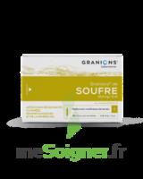 Granions De Soufre 19,5 Mg/2 Ml S Buv 30amp/2ml à AIX-EN-PROVENCE