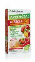 Arkovital Acérola 1000 Comprimés à Croquer B/30 à AIX-EN-PROVENCE
