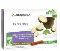 Arkofluide Bio Ultraextract Radis Noir Solution Buvable 20 Ampoules/10ml à AIX-EN-PROVENCE