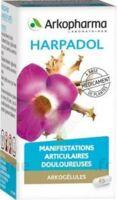 Arkogelules Harpagophyton Gélules Fl/150 à AIX-EN-PROVENCE