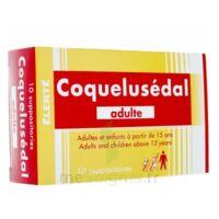 Coquelusedal Adultes, Suppositoire à AIX-EN-PROVENCE