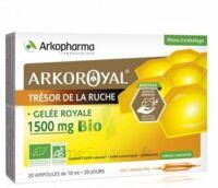 Arkoroyal Gelée Royale Bio 1500 Mg Solution Buvable 20 Ampoules/10ml à AIX-EN-PROVENCE