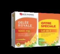 Forte Pharma Gelée Royale 1000 Mg Solution Buvable 2*b/20 Ampoules/10ml à AIX-EN-PROVENCE
