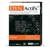 Synactifs Dynactifs Gélules B/30 à AIX-EN-PROVENCE