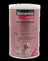 Biocanina Lait Poudre Maternisé B/400g à AIX-EN-PROVENCE