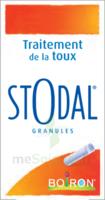 Boiron Stodal Granules Tubes/2 à AIX-EN-PROVENCE