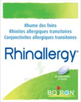 Boiron Rhinallergy Comprimés B/40 à AIX-EN-PROVENCE
