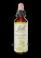 Fleurs De Bach® Original Wild Rose - 20 Ml à AIX-EN-PROVENCE