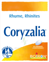 Boiron Coryzalia Comprimés Orodispersibles à AIX-EN-PROVENCE